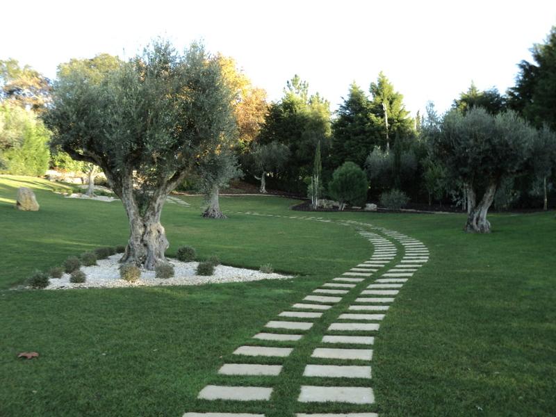Amop pavings pavimentos de exteriores mosaicos - Pavimentos de jardin ...